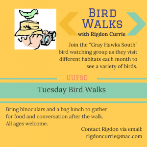 Tuesday Bird Walks with Rigdon Currie